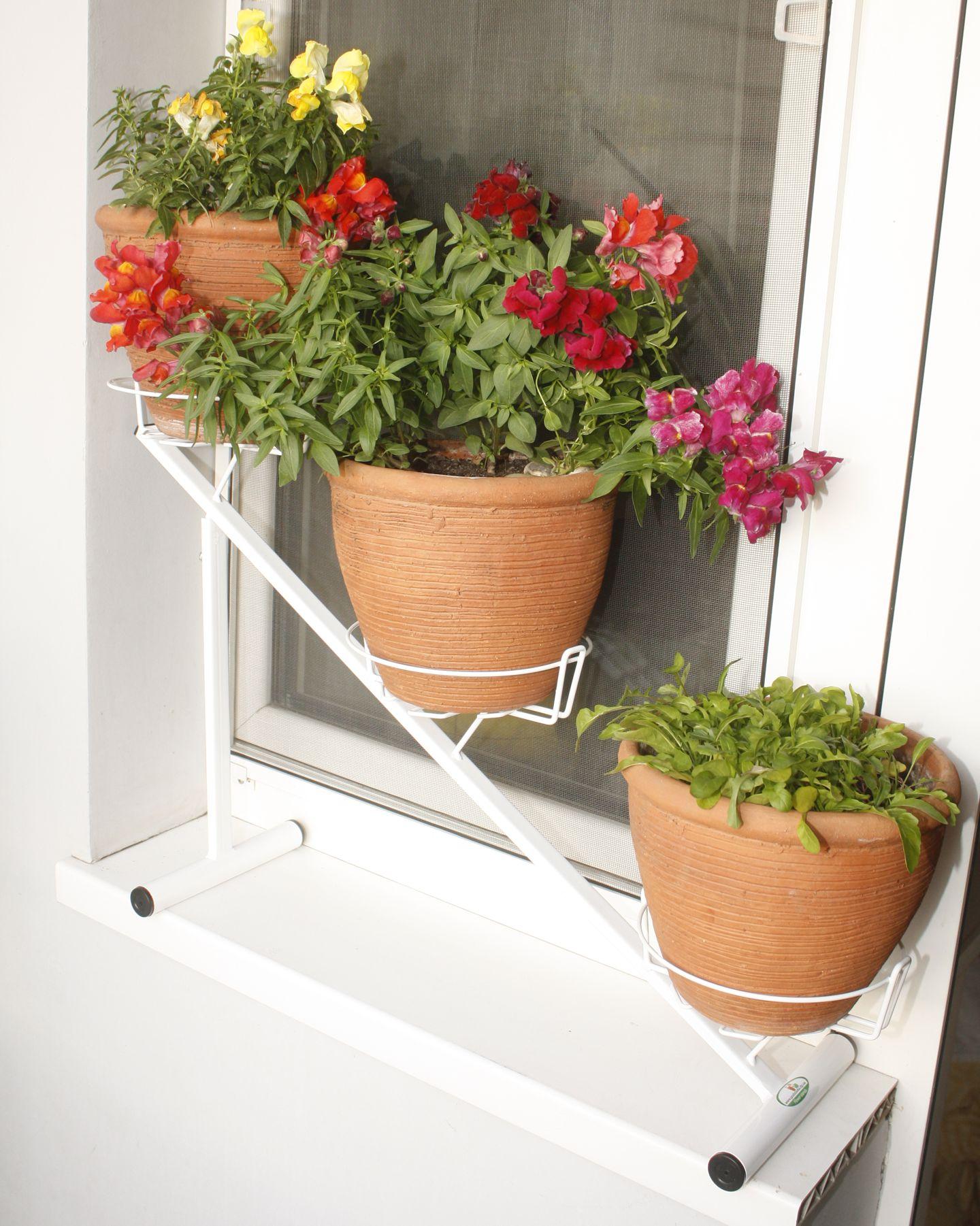 Фото подставок для цветов на окно