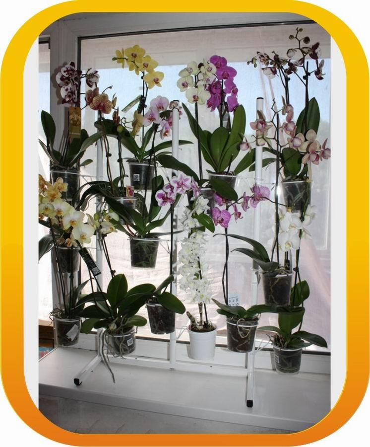 Подставка под орхидеи своими руками
