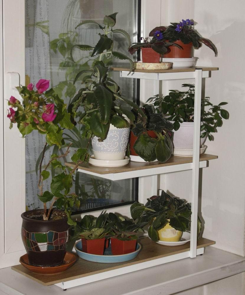 Подставки для цветов на подоконник Условия для выращивания цветов на окне 30
