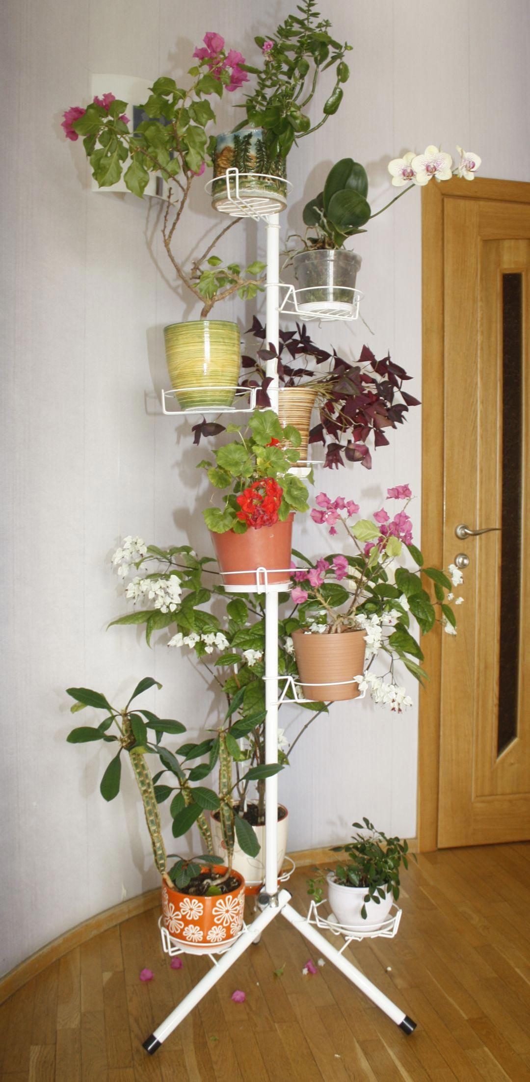 Красивая подставка для комнатных цветов фото